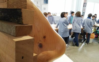 First schools workshops in 2020